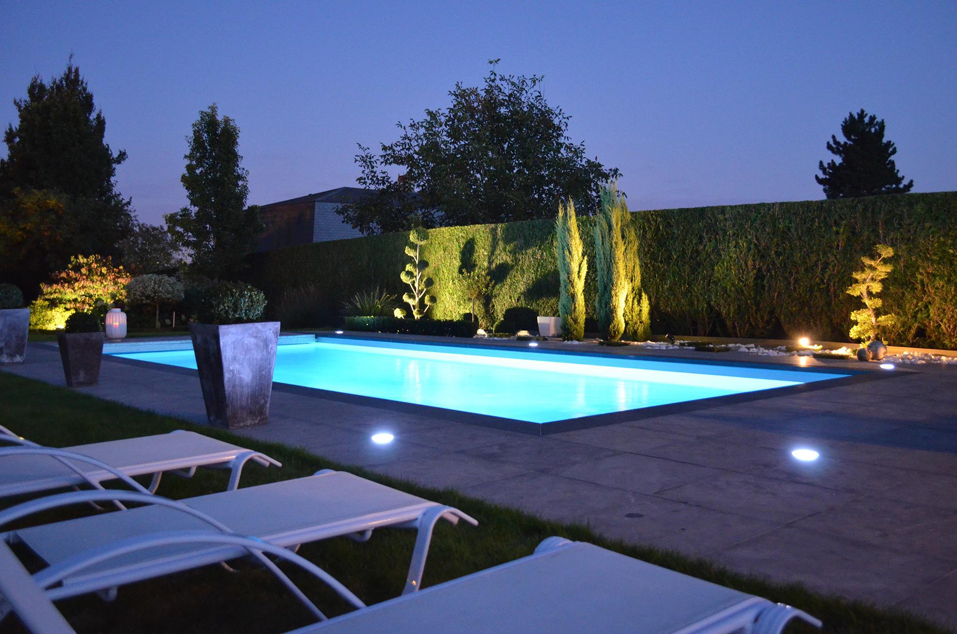 Accueil europiscine piscines spas abris for Constructeur piscine pau